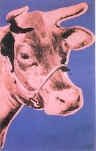 Cow, 1976 (pink & purple)