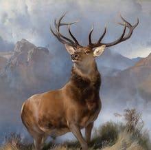 Monarch of the Glen, 1851