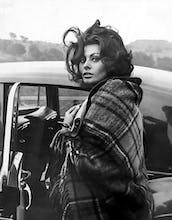 Sophia Loren, Crumlin 1965