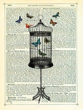 Bird Cage and Butterflies