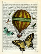 Butterflies and Balloon