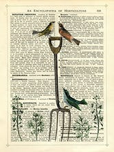 Garden Fork and Birds