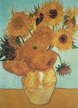 Sunflowers on Blue, 1888