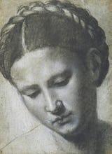 A woman's head with braided hair