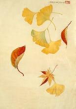 Autumnal red and yellow leaves