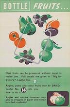Bottle Fruits