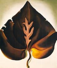 Dark and Lavender Leaf, 1931