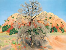 Dead Tree with Pink Hill, 1945