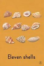 Eleven shells