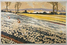 Empire Marketing Board - British Bulbs Flowering in a Field