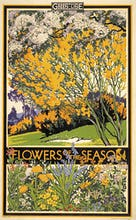 Flowers of the season, 1933