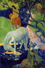 Le Cheval Blanc, 1899
