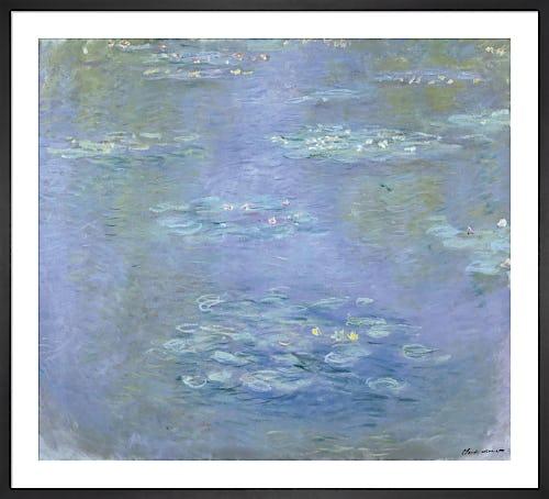 Nympheas, 1903 by Claude Monet