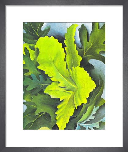 Green Oak Leaves by Georgia O'Keeffe