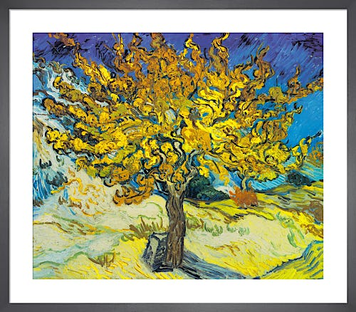Mulberry Tree, 1889 by Vincent Van Gogh