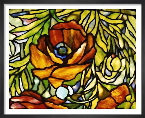 Oriental Poppy by Tiffany Studios