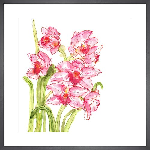 Speckled Orchids by Louise Cunningham