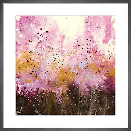 Blush by Elizabeth O'Connor