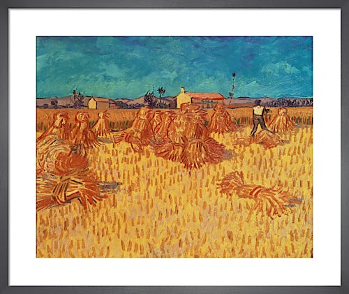 Harvest in Provence, 1888 by Vincent Van Gogh
