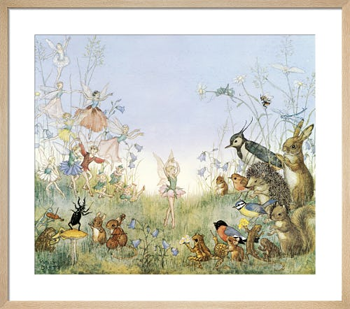 The Flower Ballet by Molly Brett