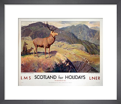 Scotland for Holidays - Deer Stalking by Anonymous