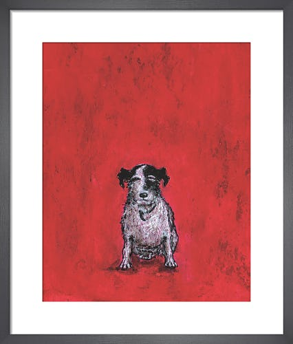 Small Dog by Sam Toft