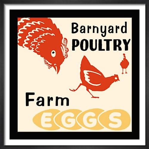 Barnyard Poultry-Farm Eggs by Retro Series