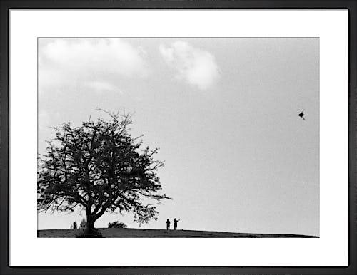 Kite-flying, Hampstead Heath by Niki Gorick