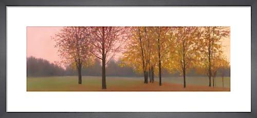 Autumn Dawn, Maples by Elissa Gore