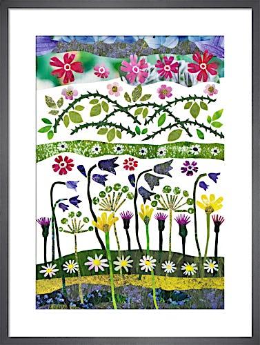 Wild Garden by Jane Robbins