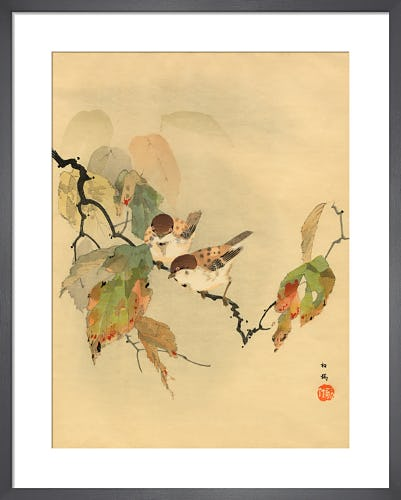 Sparrows with Autumn Leaves from Royal Horticultural Society (RHS)