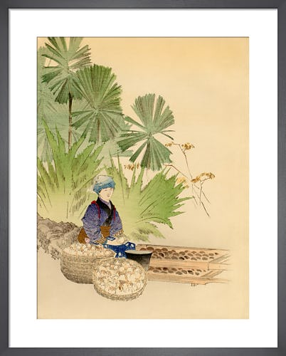 Transportation of Japanese Plants, Bulbs, etc. by L. Boehmer & Co
