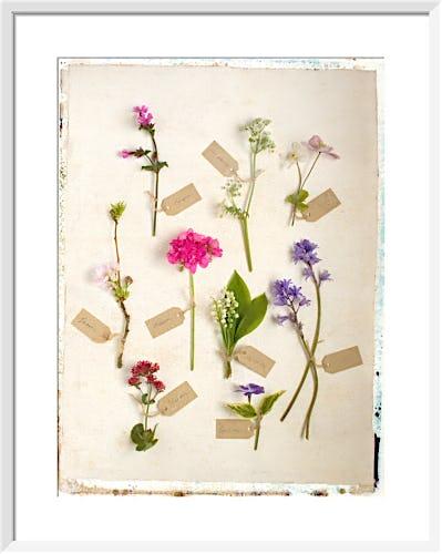 Vintage Tags by Deborah Schenck