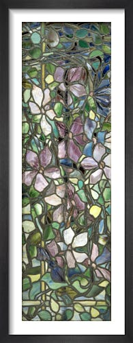 Stained Glass with Clematis, c.1900 (One Panel) by Louis Comfort Tiffany