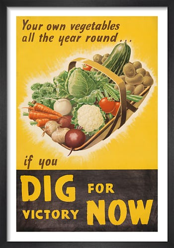 Your Own Vegetables All the Year Round by Irene Michell