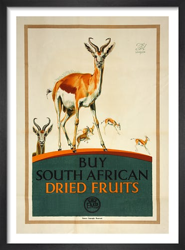 Empire Marketing Board - Buy South African Dried Fruits by F C Herrick