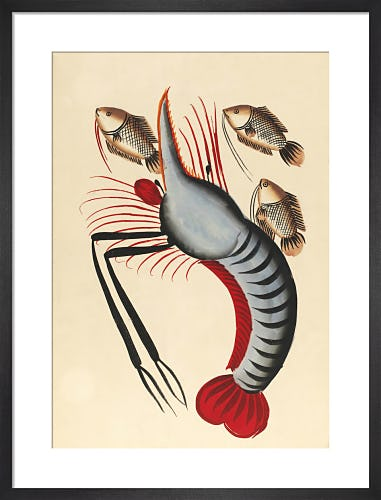 Prawn with three fishes, c.1940 from V&A
