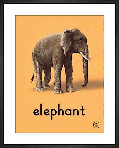 elephant by Ladybird Books'
