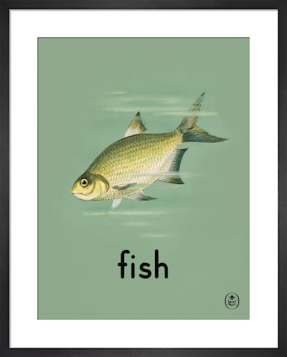 fish by Ladybird Books'