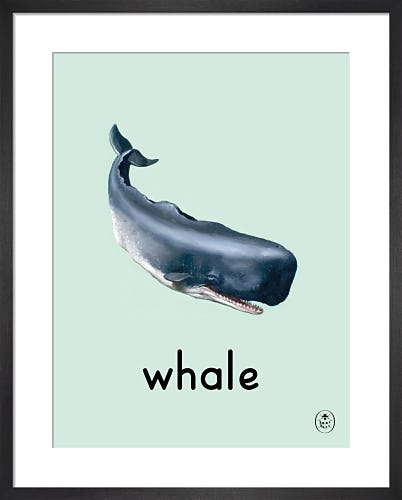 whale by Ladybird Books'