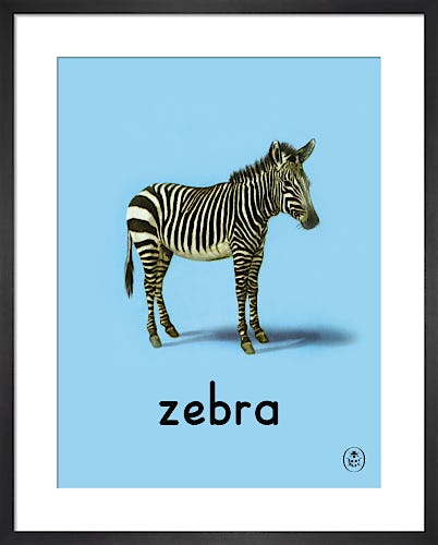 zebra by Ladybird Books'