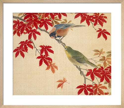 Two birds perching on the branches of a Red Maple from V&A