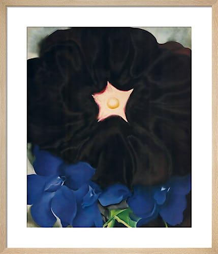 Black Hollyhock, Blue Larkspur, 1929 by Georgia O'Keeffe