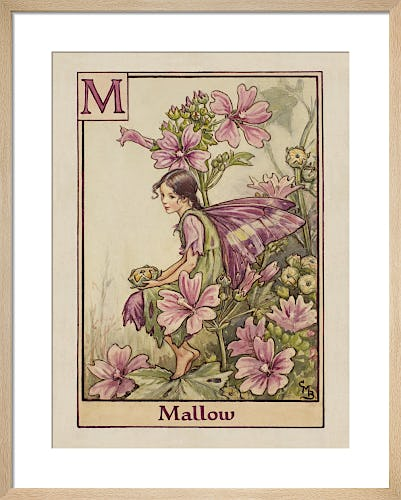 Mallow Fairy by Cicely Mary Barker