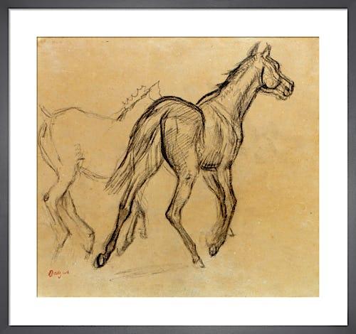 Chevaux, c.1882 by Edgar Degas