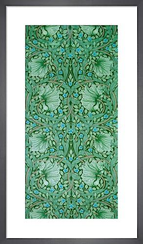 Pimpernel by William Morris