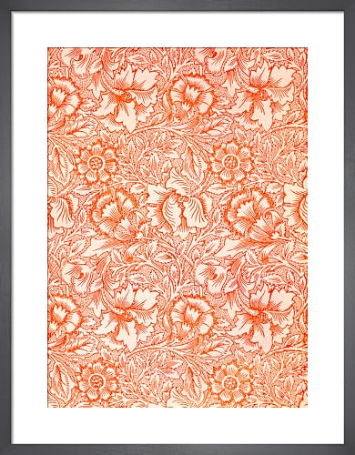 Pink and Poppy by William Morris