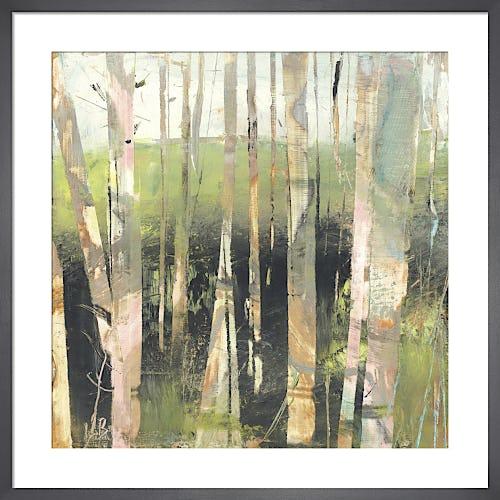 Birches by Lesley Birch