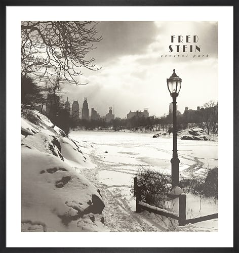 Central Park, Winter by Fred Stein