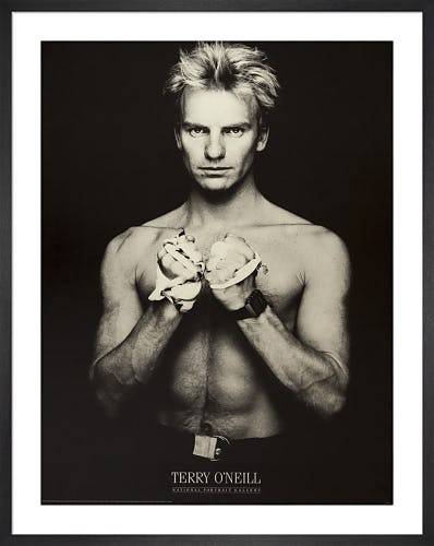 Sting (Gordon Sumner) 1984 by Terry O'Neill